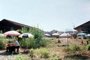 Ce vieux rêve qui bouge - Alain Guiraudie - 2001 dans * 100 reve2-300x200