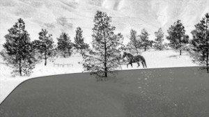 01. 24 frames - Abbas Kiarostami - 2017