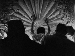 34. The white rose - Bruce Conner - 1967